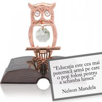 Nelson Mandela-despre educatie-Citat motivational Swarovski