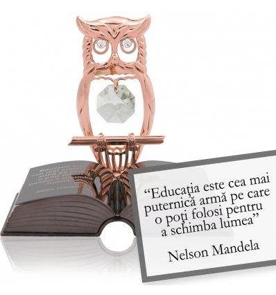 Nelson Mandela - despre educatie -  Colectia