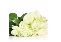Buchet de 11 Trandafiri Albi