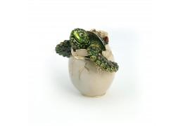 Newbie - casetuta broscuta cu cristale