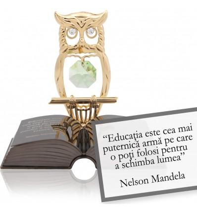 """Nelson Mandela - Despre educatie """"Citate motivationale cu cristale Swarovski"""""""