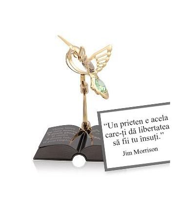 Citate Motivationale Despre Fotografie : Jim morrison despre prietenie colectia citate motivationale cu